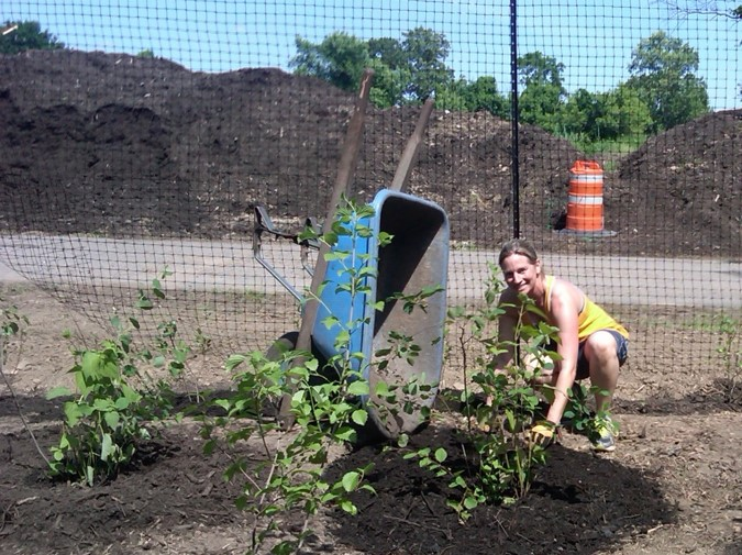 Restoring wildlife habitat
